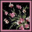 Orchidea della pace